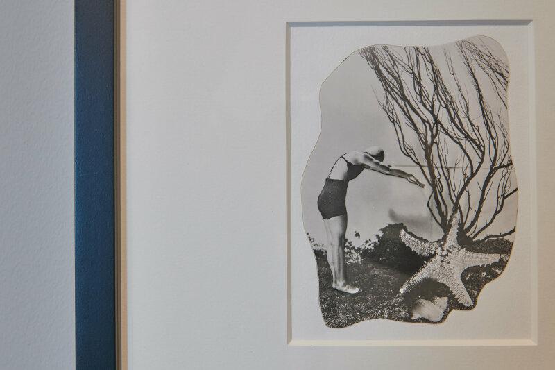 Vue de l'exposition Né(e)s de l'écume et des rêves - MUMA, Le Havre ©Laurent Lachèvre (10)