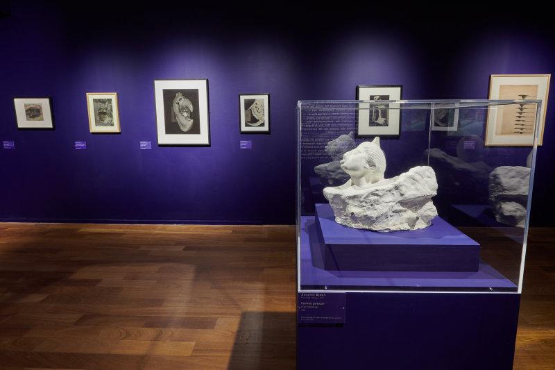Vue de l'exposition Né(e)s de l'écume et des rêves - MUMA, Le Havre ©Laurent Lachèvre (21)