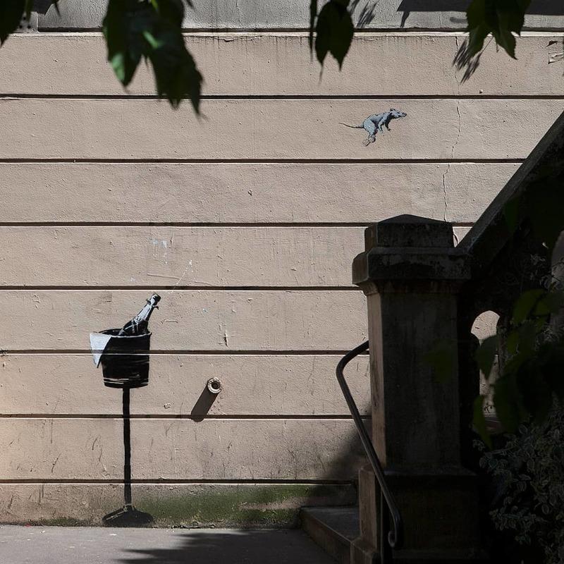 © Banksy - Champain rat