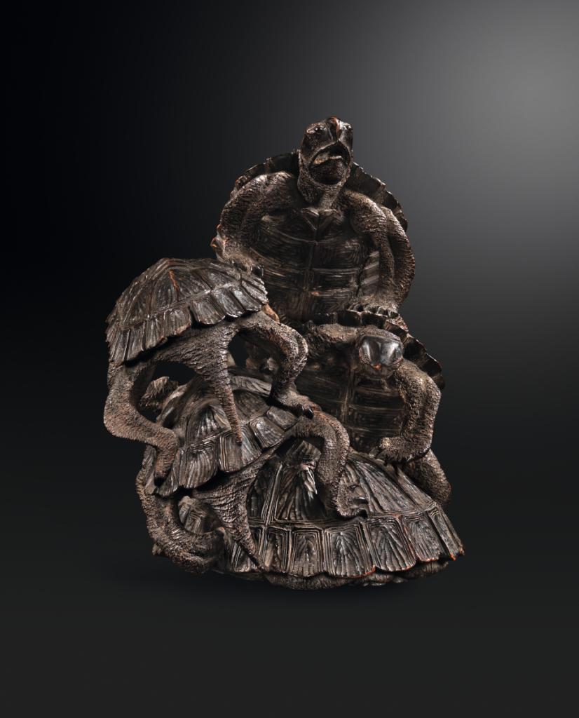 Cinq tortues © Institut Lussato-Fédier - Musée de la Castre Cannes