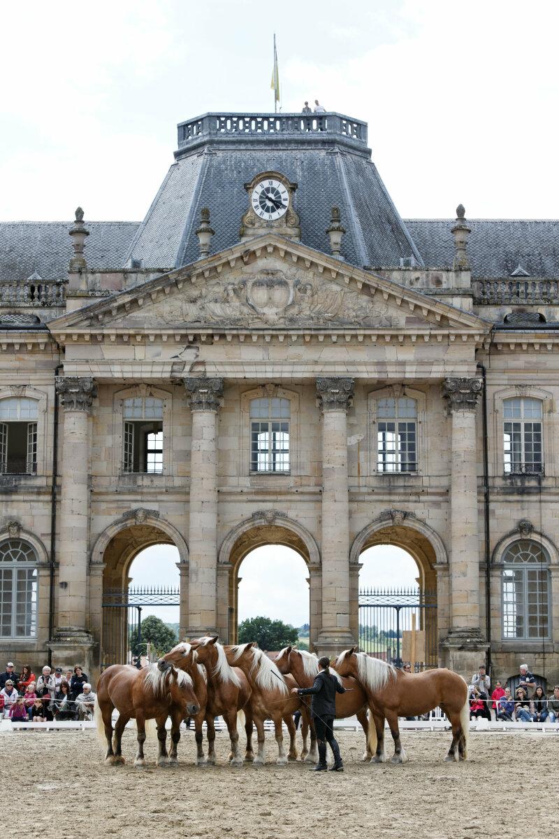 Vue de l'entrée du château de Lunéville