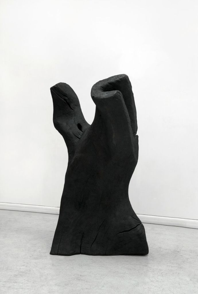 David Nash, Torso, 2011© David Nash Courtesy Galerie Lelong & Co. Paris
