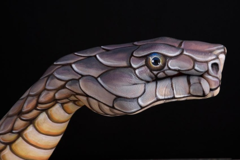 hand painting cobra