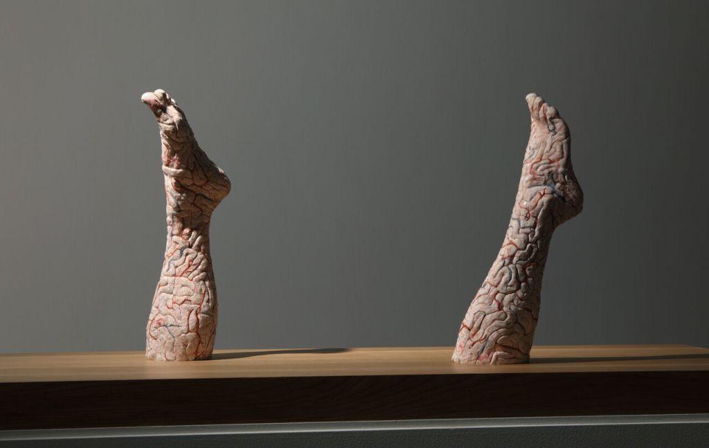 Jan Fabre, Brain legs, 2010