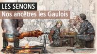 Les Sénons, Musée de Troyes