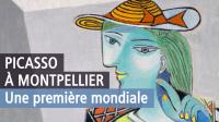 Picasso, donner à voir, Musée Fabre