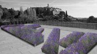 Tania Mouraud Mise en situation Mots Mêlés Plants de lavande en fleur Biennale Internationale de Saint-Paul de Vence©Tania Mouraud