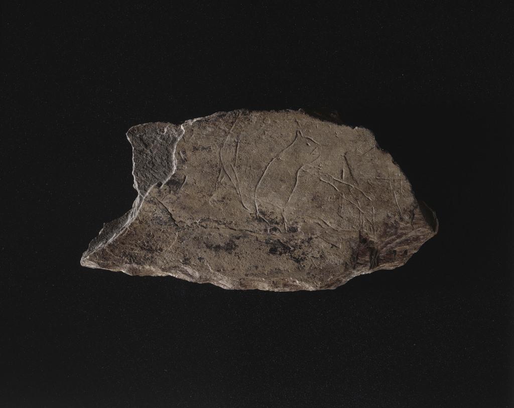Trésors des collections - Musée d'archéologie nationale, Saint Germain en Laye (2)