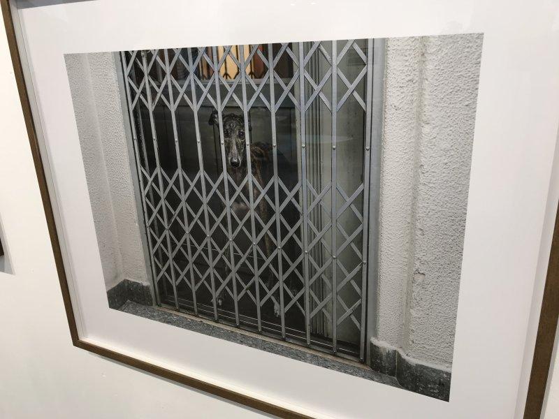 Vue de l'exposition Home, Seize photographes Magnum - Galerie Joseph (14)