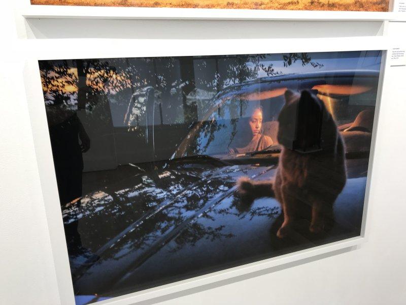 Vue de l'exposition Home, Seize photographes Magnum - Galerie Joseph (26)