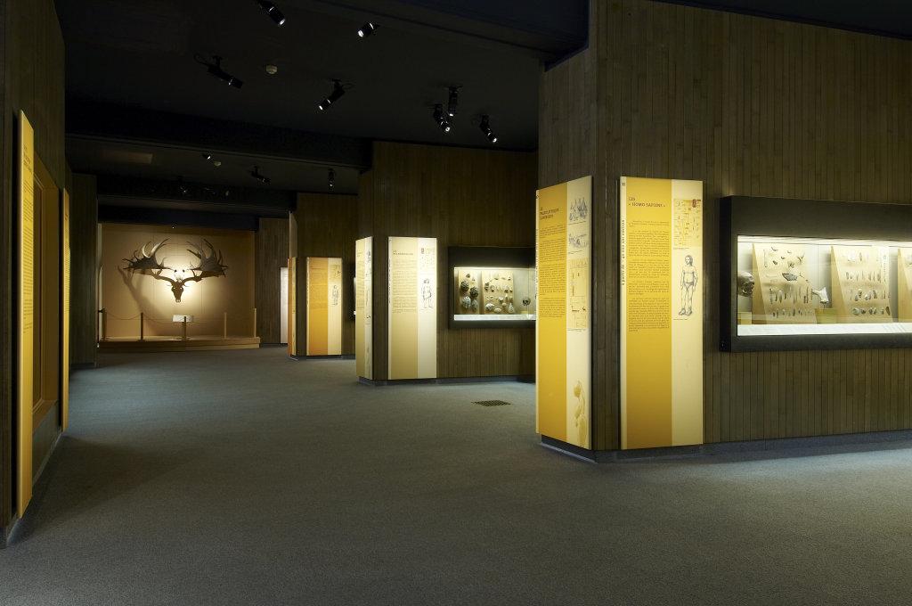 Vue des collections permanentes - Musée national d'archéologie, Saint Germain en Laye (1)