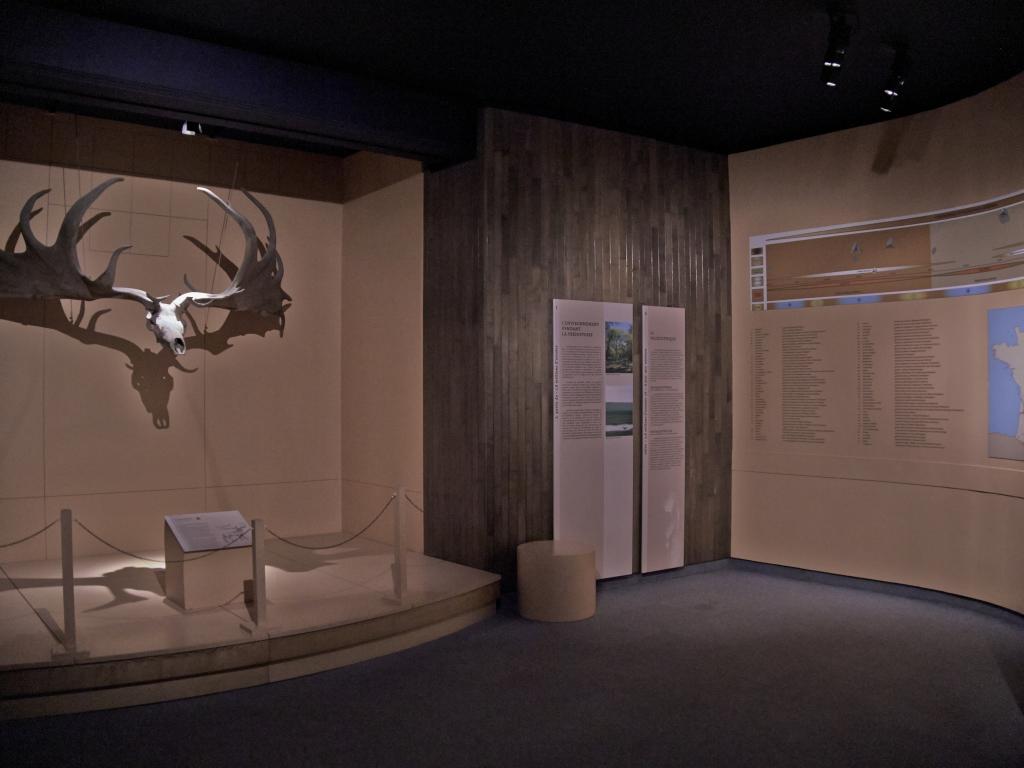 Vue des collections permanentes - Musée national d'archéologie, Saint Germain en Laye (10)