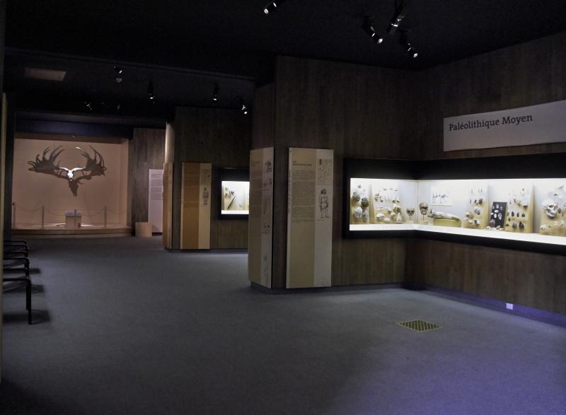 Vue des collections permanentes - Musée national d'archéologie, Saint Germain en Laye (12)