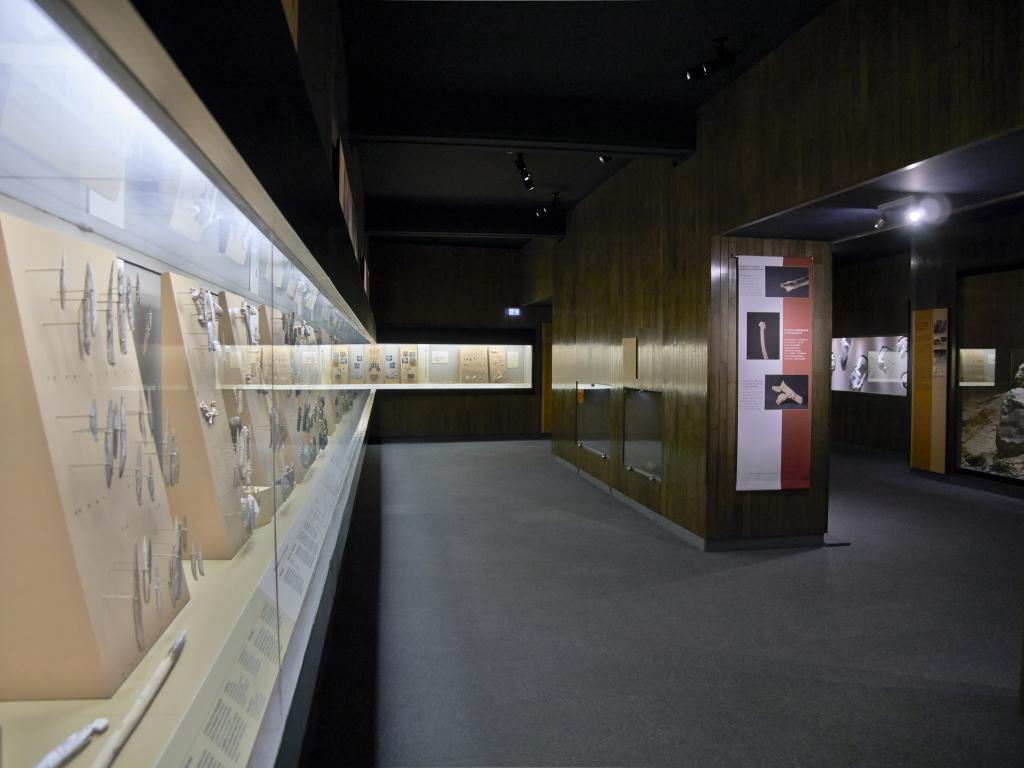 Vue des collections permanentes - Musée national d'archéologie, Saint Germain en Laye (14)