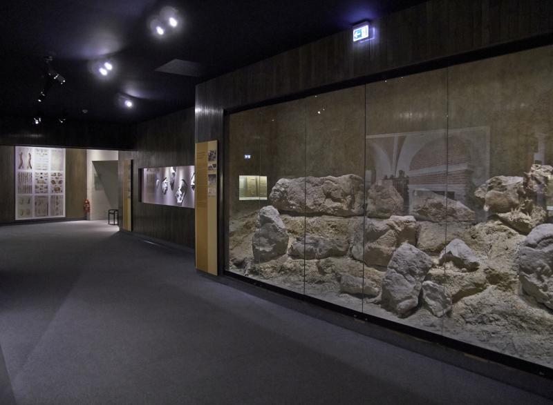 Vue des collections permanentes - Musée national d'archéologie, Saint Germain en Laye (17)