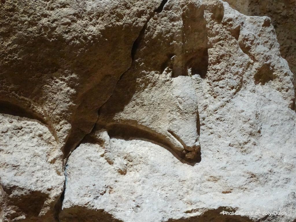 Vue des collections permanentes - Musée national d'archéologie, Saint Germain en Laye (39)
