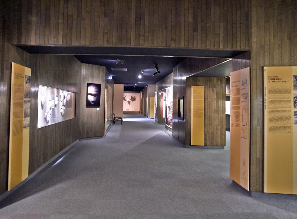Vue des collections permanentes - Musée national d'archéologie, Saint Germain en Laye (5)