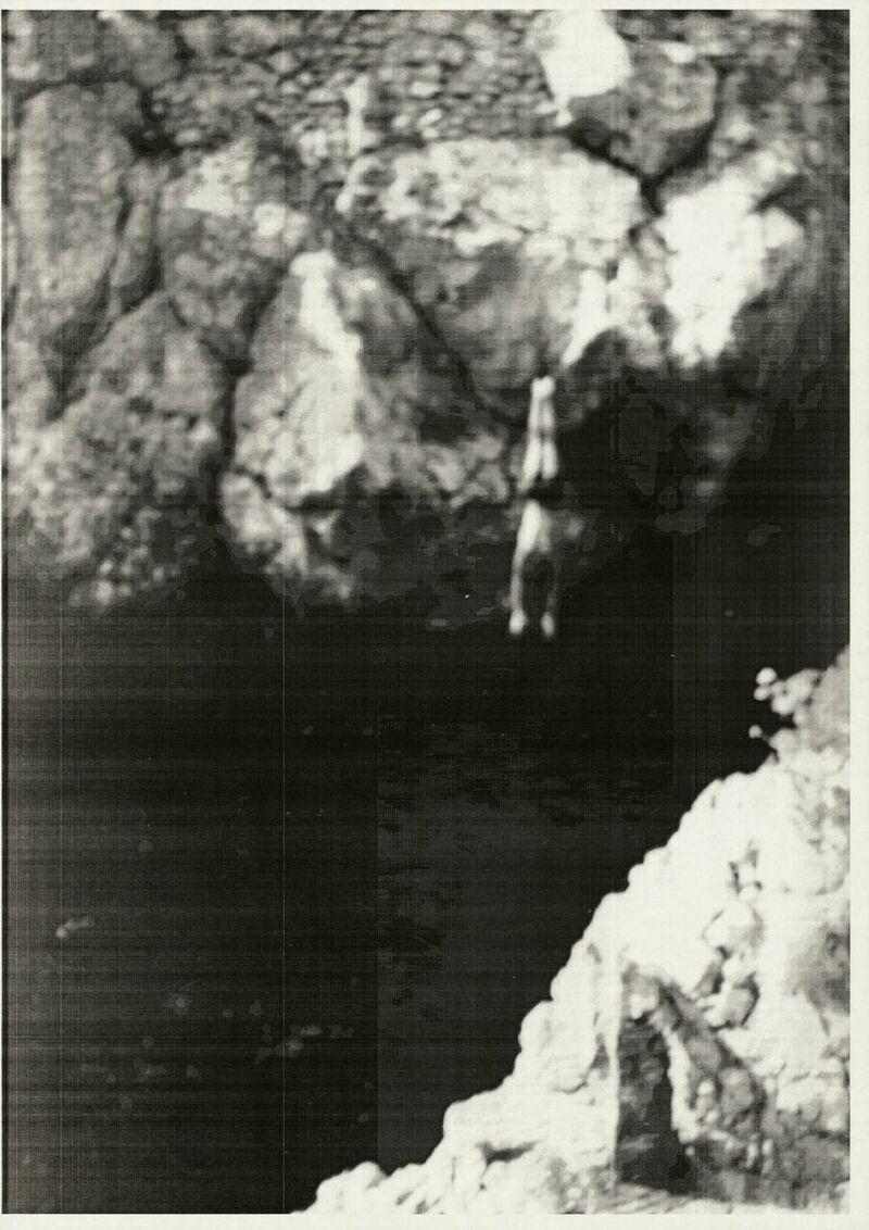 Wolfgang Tillmans, Springer, 1987