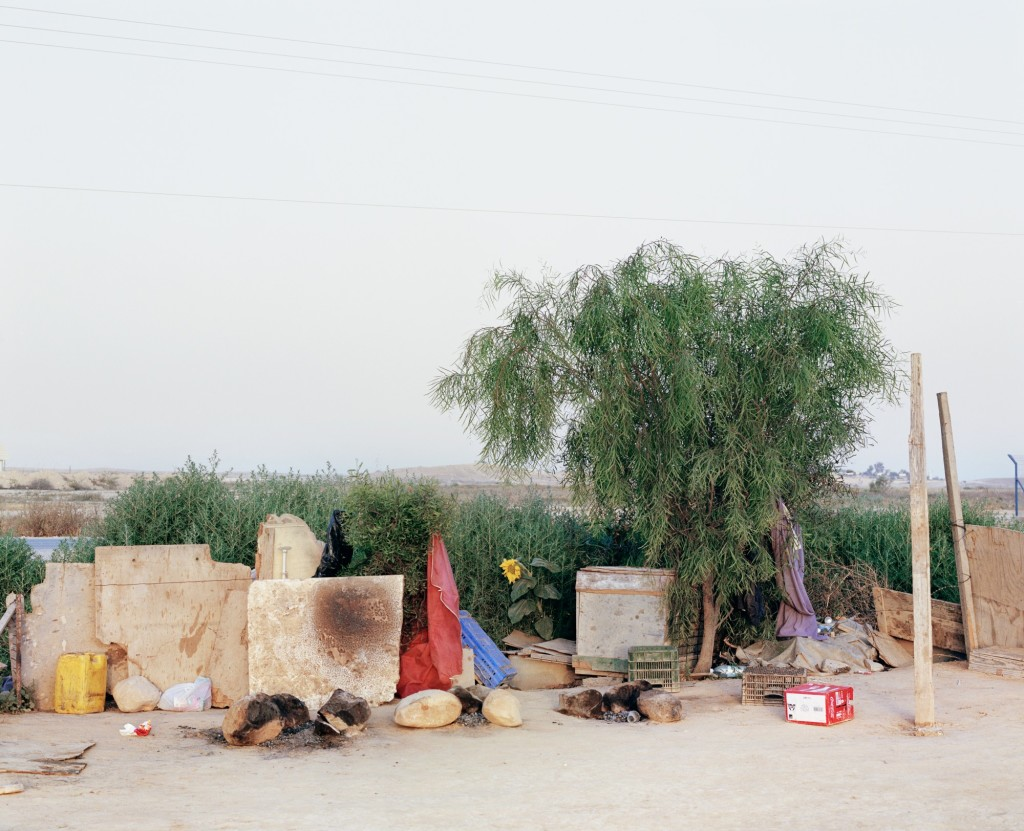 Ron Amir - Quelque part dans le désert