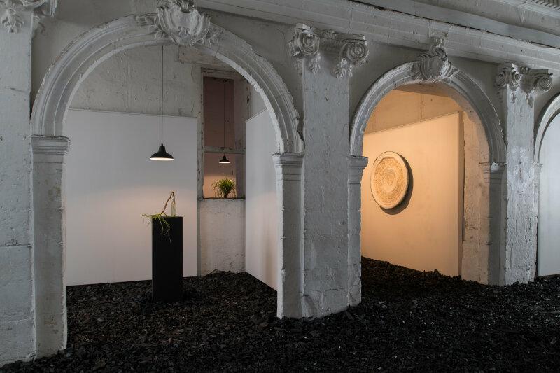 Michel Blazy, Last Garden, le Voyage à Nantes 2018