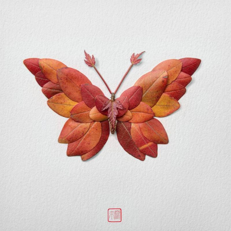 raku-inoue-insectes-17