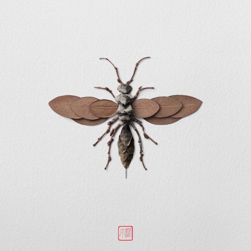 raku-inoue-insectes-2