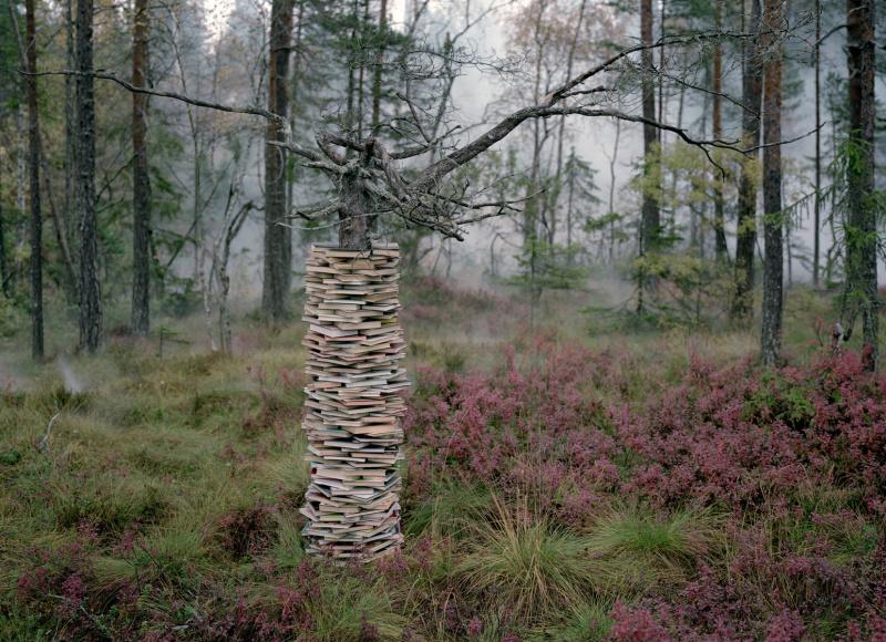 Installation Land Art de Rune Guneriussen
