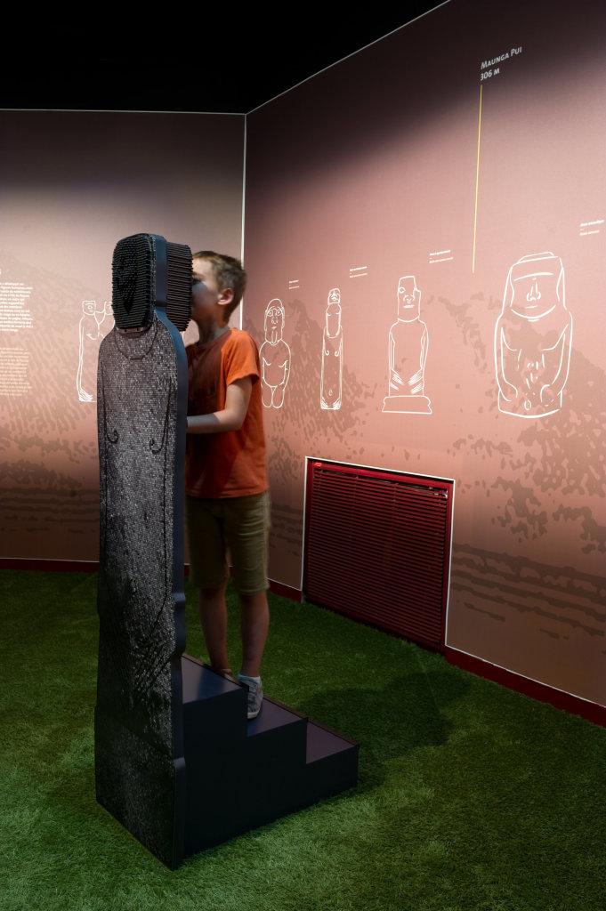 Vue de l'exposition Île de Pâques - Muséum de Toulouse