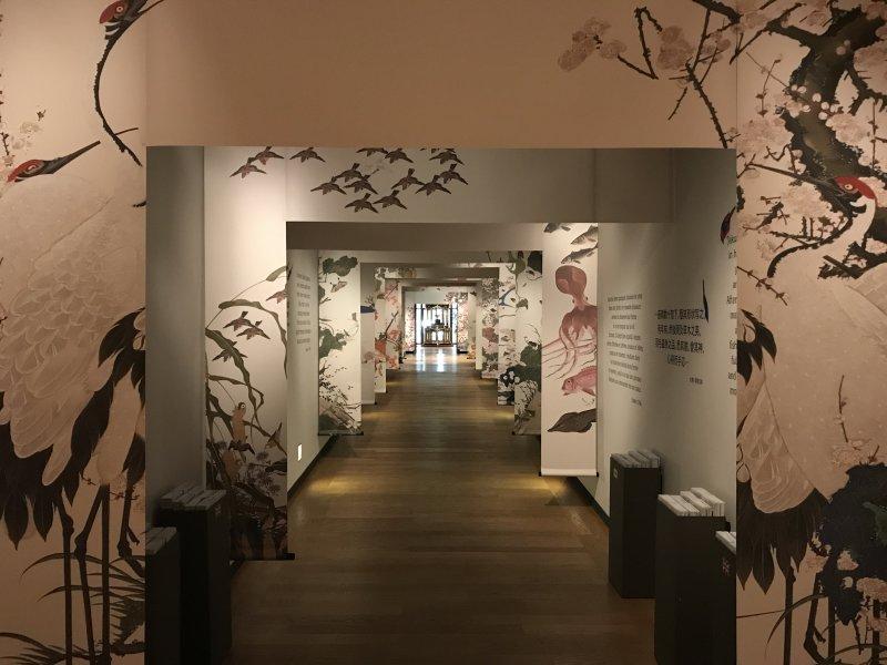 Vue de l'exposition Jakuchū, le Royaume coloré des êtres vivants - Petit Palais (48)