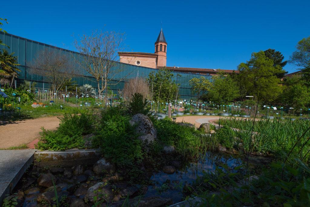 Vue du Muséum de Toulouse