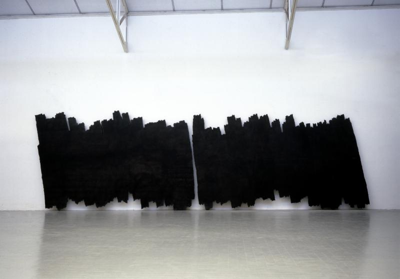 Bernar Venet, Deux surfaces indéterminées, 1999