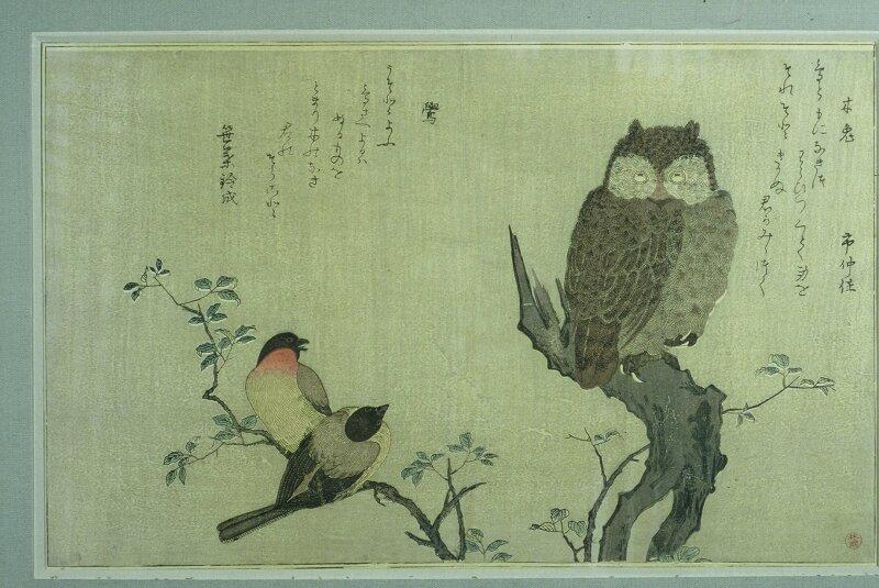 Kitagawa Utamaro, Hibou sur un tronc d'arbre et deux rouges-gorge