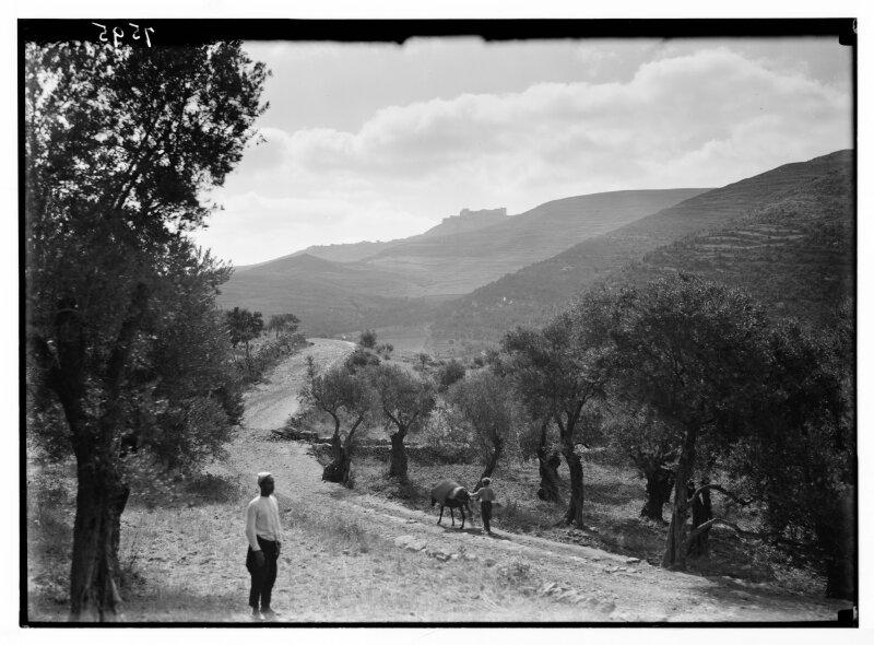 American Colony (Jerusalem), Crac des Chevaliers, vue depuis le Monastère Saint George,1936© Library of Congress