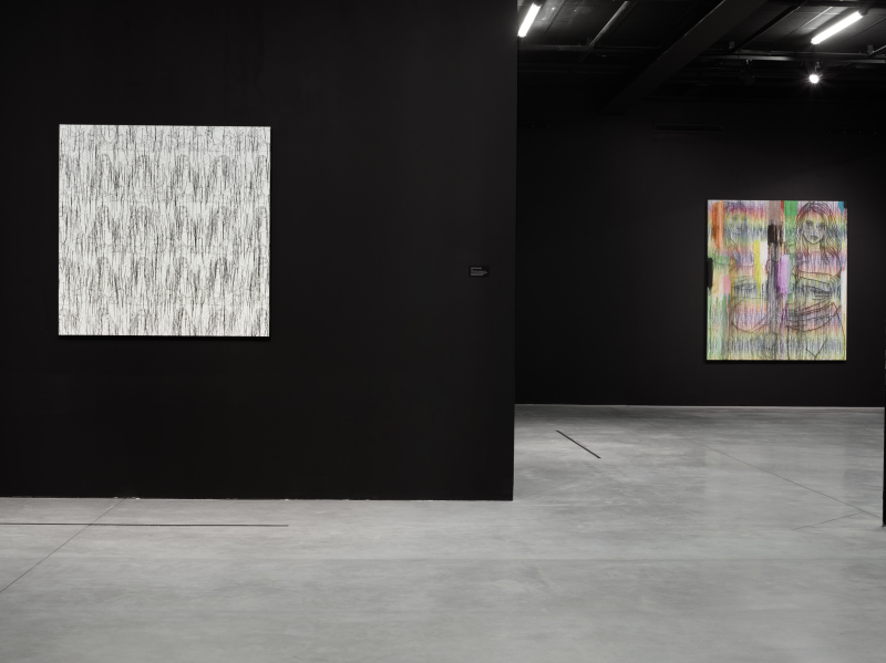 (c) Gadha AMER -Exposition Cactus painting 2018