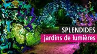 Jardins de Lumière, Domaine de Chaumont-sur-Loire