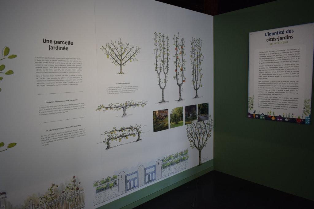 Vue de l'exposition Cités jardins, cités de demain - La Fabrique des Savoirs, Elbeuf (15)