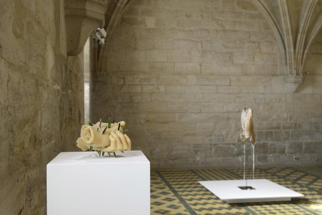Vue d'ensemble, exposition de Patrick Neu a l abbaye de Maubuisson, Photo C. Brossais-CDVO (5)