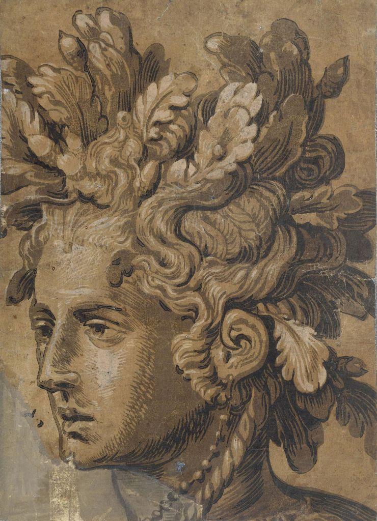 Joos Gietleughen, d'après Frans Floris, Tête de dryade, Vers 1555, Gravure sur bois