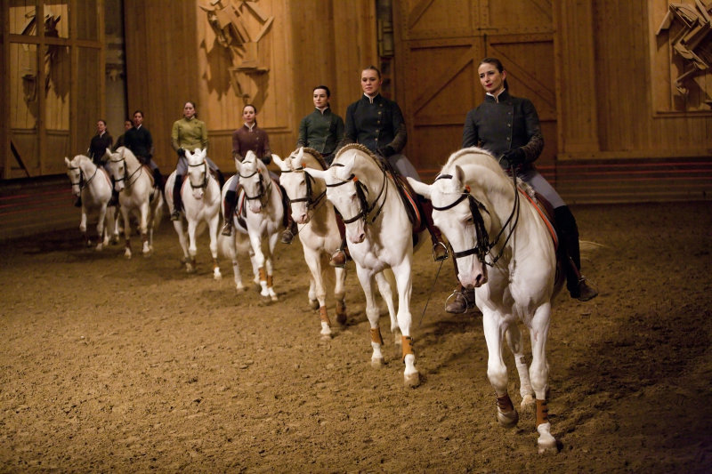Académie équestre de Versailles - Carrousel