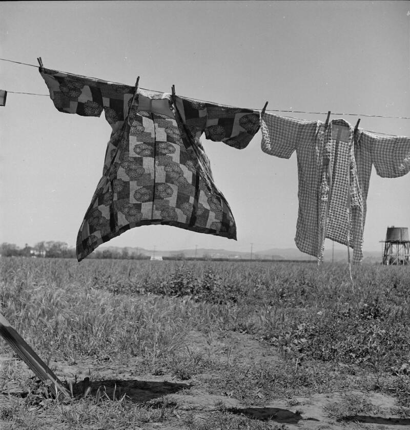 Dorothea Lange, Jour de Lessive