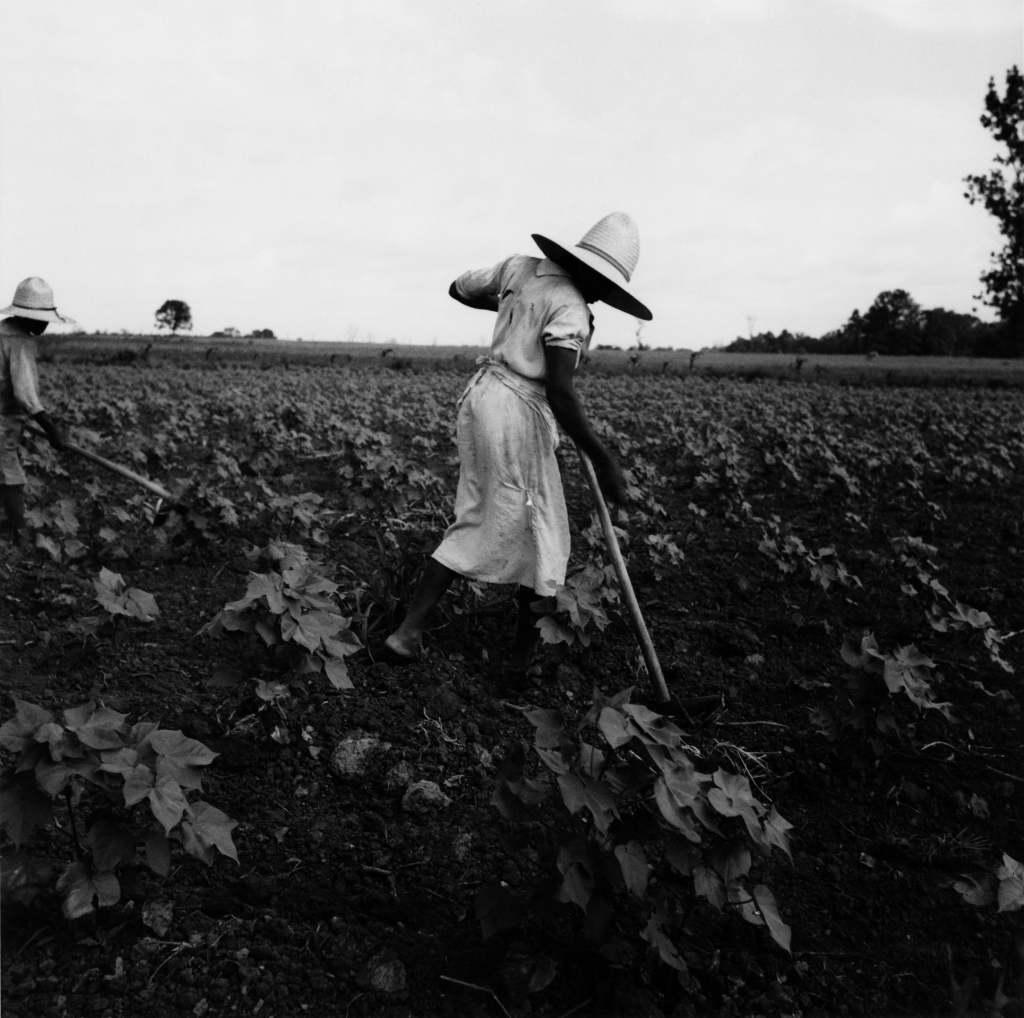 Dorothea Lange, Near Eutah