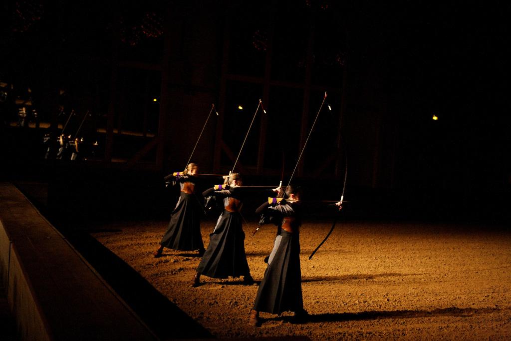 Académie équestre de Versailles - Kuyo