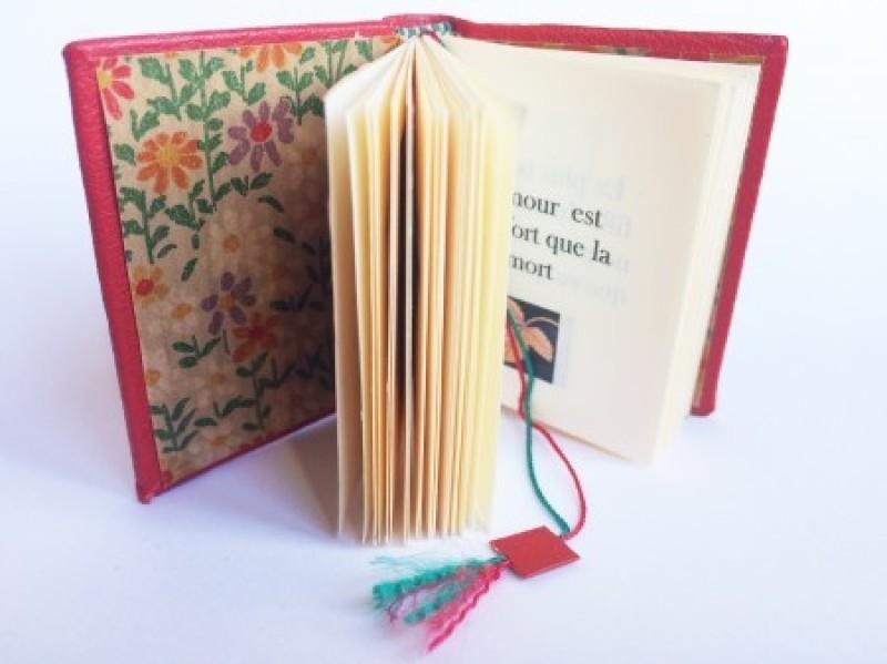 Livres minuscules, Mini Ma, Paris (c)