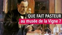 Pasteur à l'oeuvre, Musée de la vigne et du vin du Jura