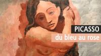 Picasso bleu et rose, Musée d'Orsay
