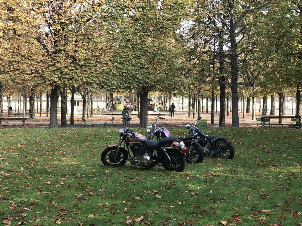 Vue de la FIAC Hors les Murs, Jardin des Tuileries (13)