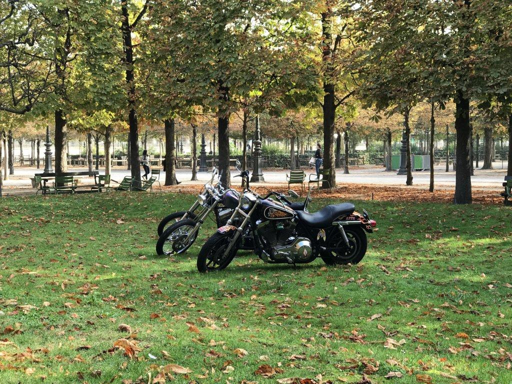 Vue de la FIAC Hors les Murs, Jardin des Tuileries (15)