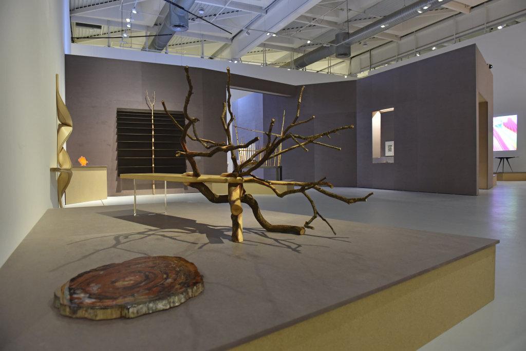 Vue de l'exposition Design et Merveilleux - MAMC Saint-Etienne