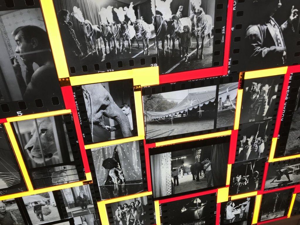 Vue du Salon d'Automne 2018 - Champs-Elysées (119)
