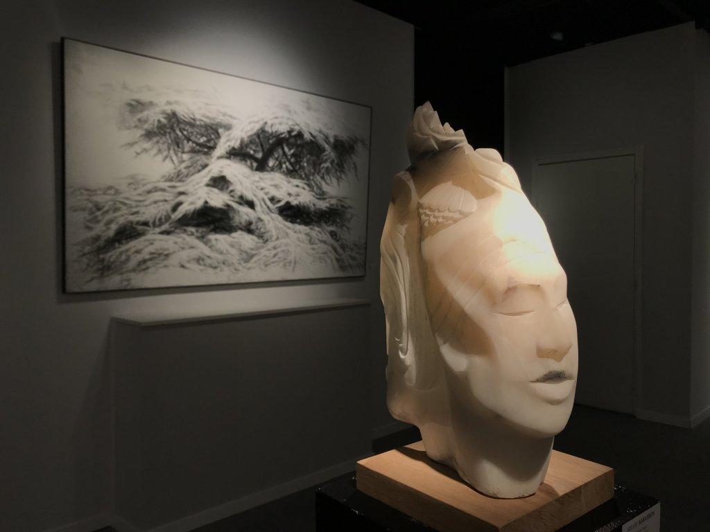 Vue du Salon d'Automne 2018 - Champs-Elysées (4)